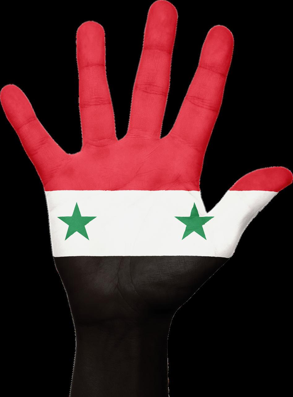 Fay3 - صور لـ #أصابع #علم #سوريا #الوطني #وطني #يد