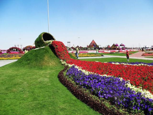 Dubai Miracle Gardens #دبي ميراكل - صورة 14