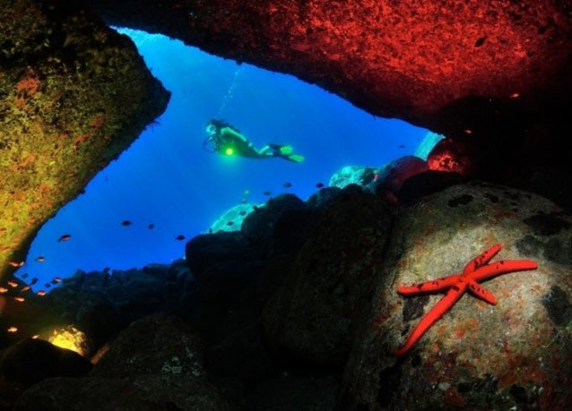 winner of the 2013 DEEP Indonesia international underwater photography competition 7