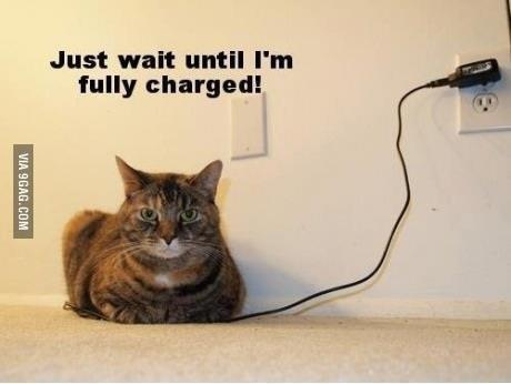 just wait until am fully charged