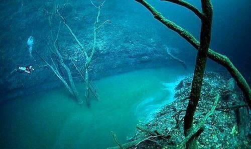 There are underwater rivers flowing along the bottom of the ocean