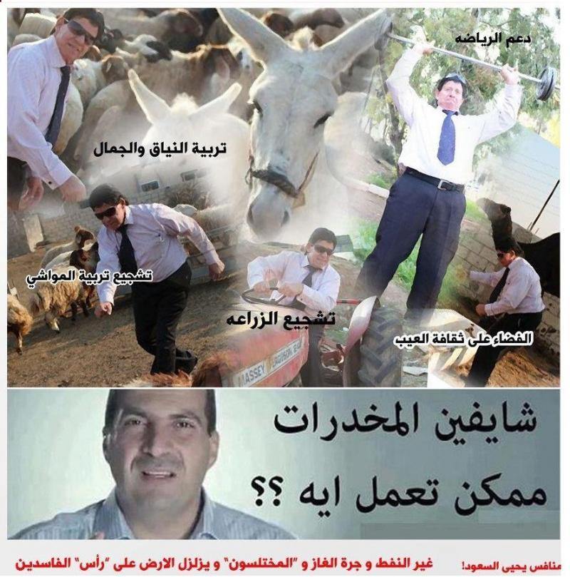 بروشور حملة #شبلي_حداد