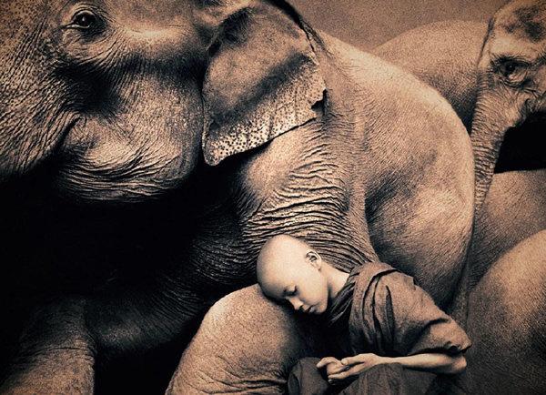 مصور يدمج صور بشر مع حيوانات تحت عنوان -Coming Together Like One - صورة ٣
