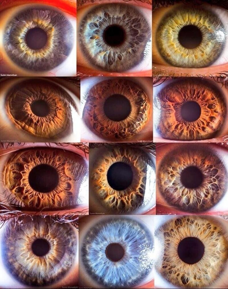 شاهد شكل عينك حسب لونها
