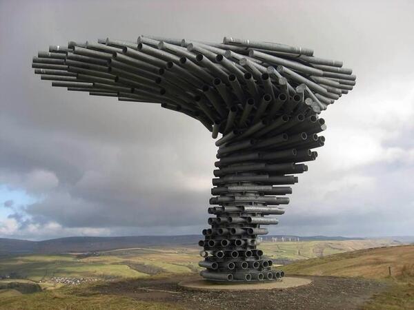فكرة رائعة تسمى شجرة الغناء تسمع أصوات الموسيقى عندما تهب الرياح