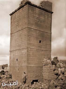 صور منوعة من مدينة #المفرق #الأردن - صورة 53