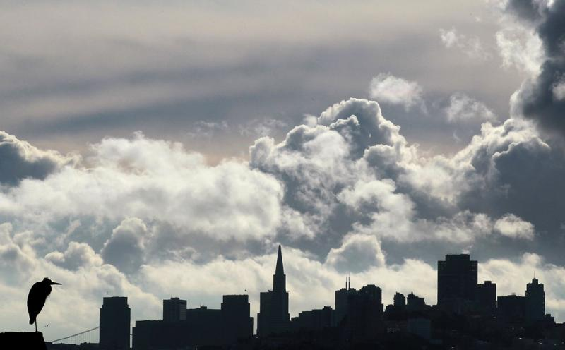 A bird sits on a perch in Sausalito, Calif., as clouds passed over the San Francisco skyline #Nature