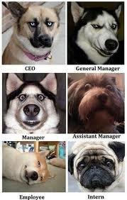 Management Lessons - 4