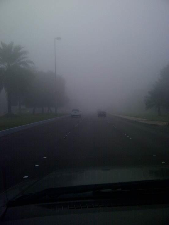الضباب في #أبوظبي