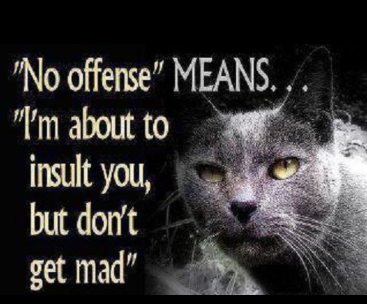No offense means: i'm about to insult you, but don't get mad