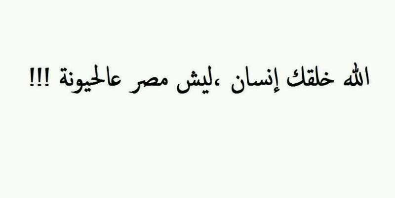 ليش مصر عالحيوانة ..