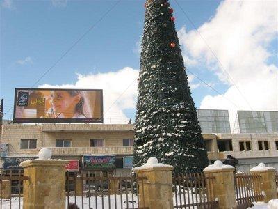 شجرة الميلاد مكسوة بالثلج منظر جميل من سنوات الخير في #الفحيص #الأردن