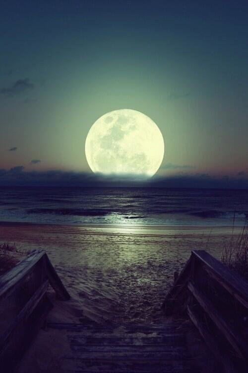Can't fight the moonlight, Brazil