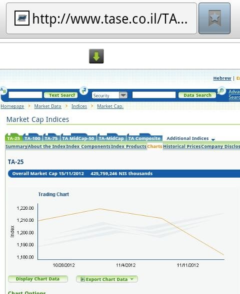 Israel stock market falls