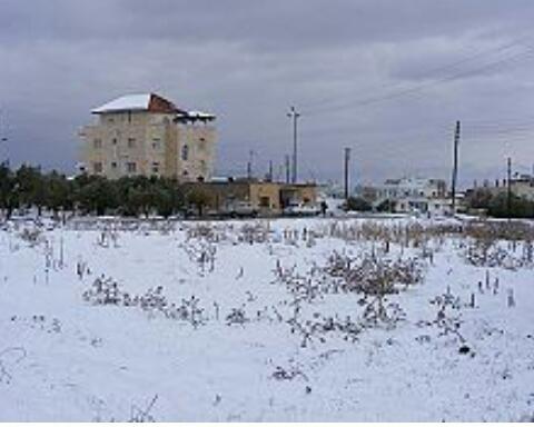 #إربد #الأردن في موسم الثلج