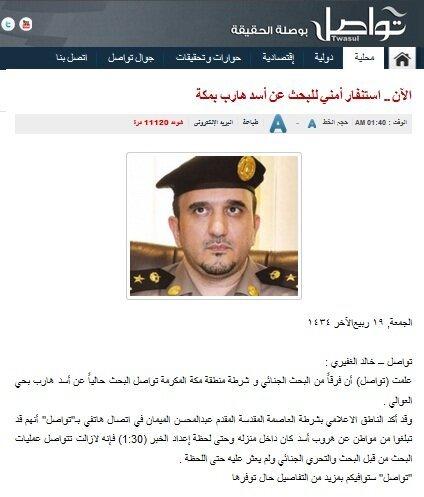 خبر أسد هارب في #مكة #السعودية