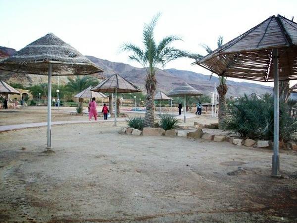 صور منوعة من #الأغوار #الأردن - صورة 2