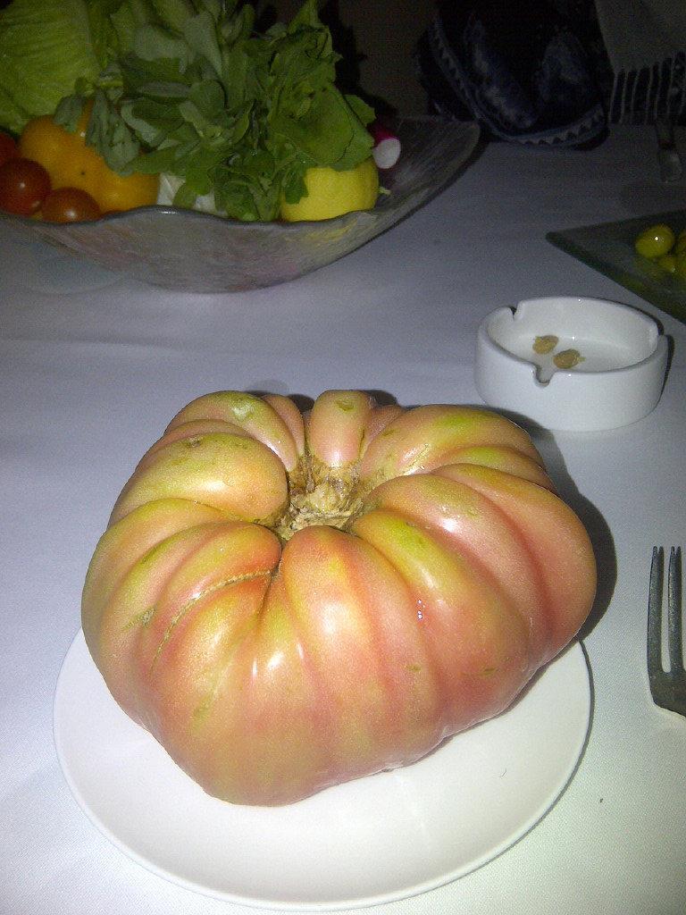 Organic Tomatto -Awtar Dubai-