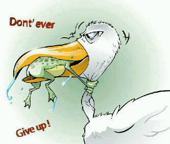 Dont ever give up