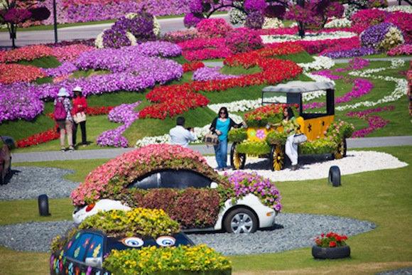 Dubai Miracle Gardens #دبي ميراكل - صورة 18