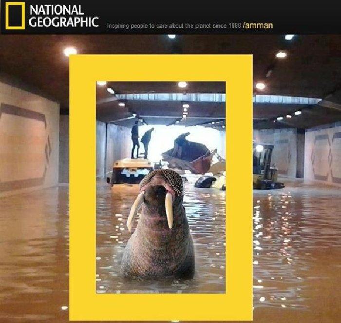 ناشيونال جيوجرافيك تطلق عددها الأول عن #الأردن بمناسبة #اعصار_وظحة #نهفات