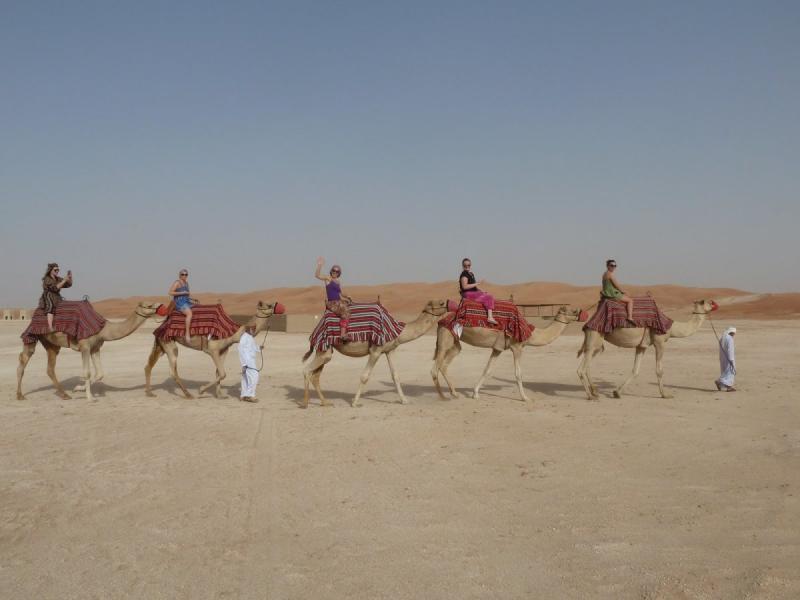 الركوب على الجمال #أبوظبي