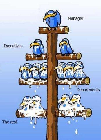 Management Lessons - 1