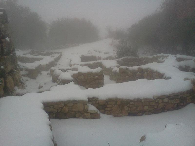 الثلج في #الأردن