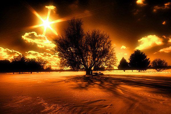 Best Nature Images 4