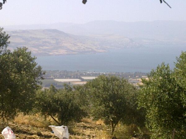 #أم_قيس في #الأردن - صورة 12