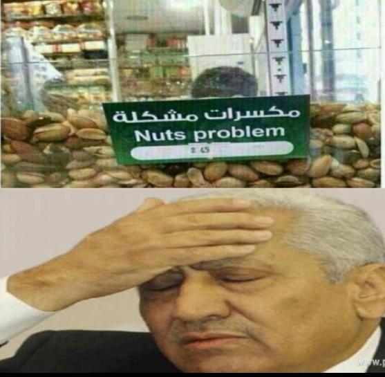 النسور والمكسرات المشكلة #نهفات #الأردن