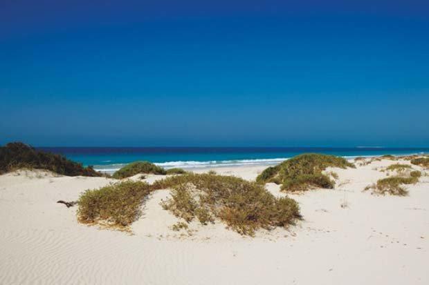 Saadiyat Island Beach #AbuDhabi