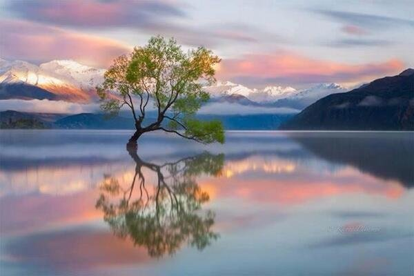 This was taken in New Zealand, a beautiful part of the awesome creation we live in.