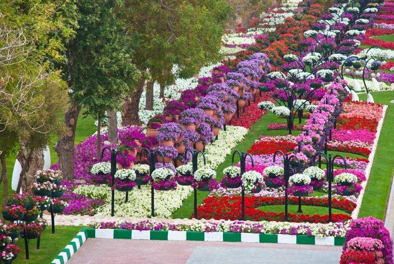 حدائق AlAin Paradise في #العين #أبوظبي - صورة 1