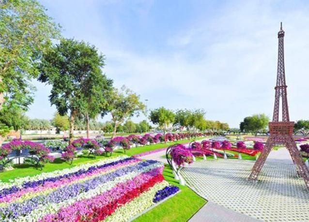 حدائق AlAin Paradise في #العين #أبوظبي - صورة 5