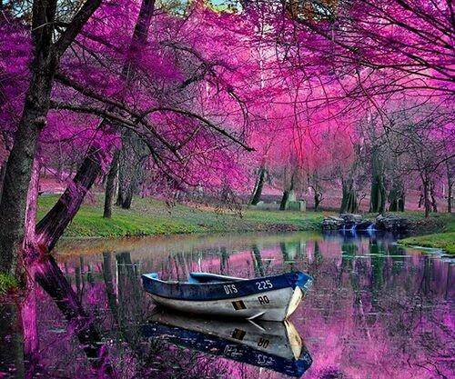 صورة رومانسية لقارب في الماء