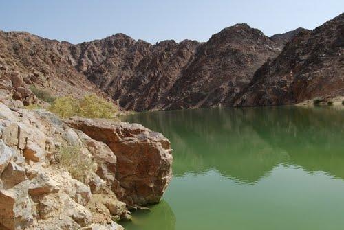 نهر #الأردن في #الأغوار