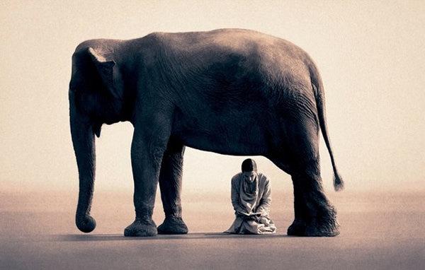 مصور يدمج صور بشر مع حيوانات تحت عنوان -Coming Together Like One - صورة ٤
