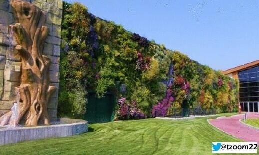 حديقة على جدار بمساحة 1236 متر مربع في إيطاليا