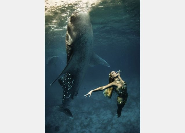 winner of the 2013 DEEP Indonesia international underwater photography competition 6