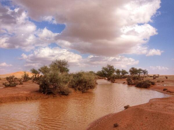 اجواء شعيب الشوكي (شرق تمير وشمال شرق #الرياض ) عصر اليوم ولازال يجري بشكل خفيف #أمط