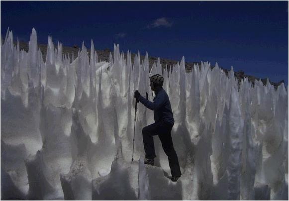 هل شاهدتم أو سمعتم بأنياب الثلج ؟؟ شاهدوا الصورة لهذه الظاهرة الطبيعية الغريبة