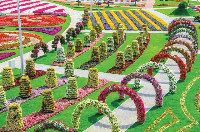 Dubai Miracle Gardens# #دبي ميراكل - صورة 2