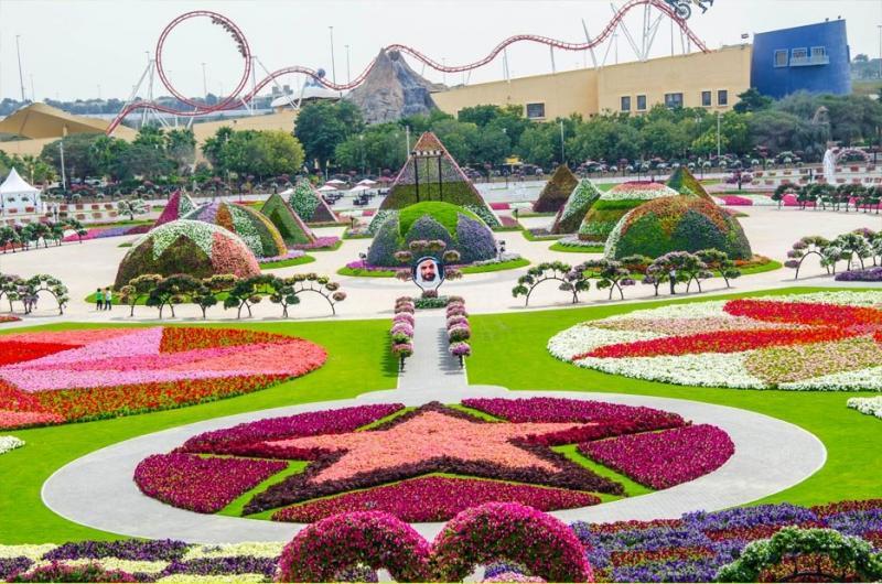 Dubai Miracle Gardens #دبي ميراكل - صورة 13