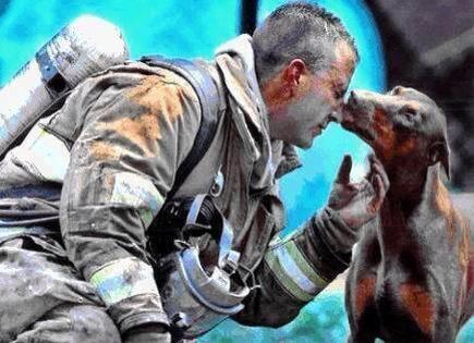A pregnant dog kissed a firefighter after saving her life and the lives of her babies from a fire in