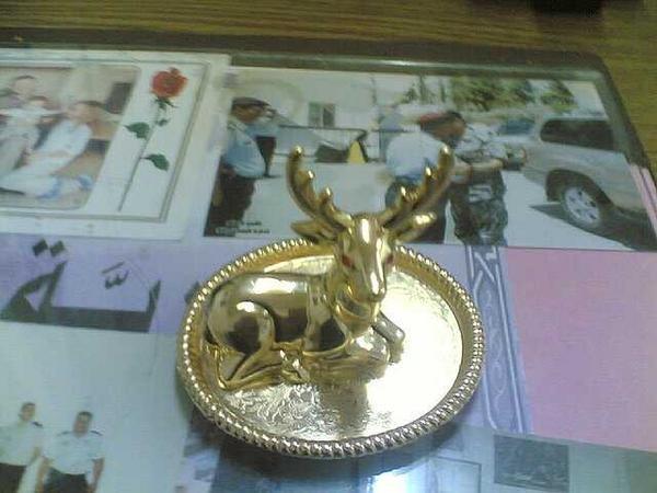 تمثال لغزال #الطفيلة #الأردن