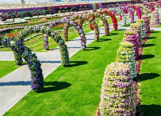Dubai Miracle Gardens #دبي ميراكل - صورة 9