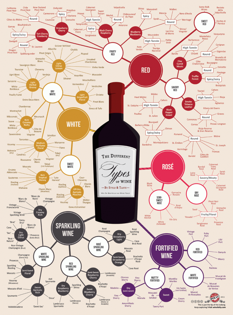 The different types of wine by style and taste #infographic