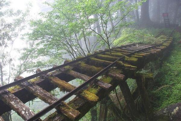 Abandoned Rail Bridge in Japan