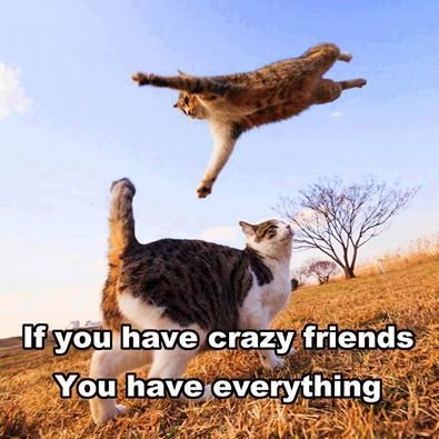 if you have a crazy friend